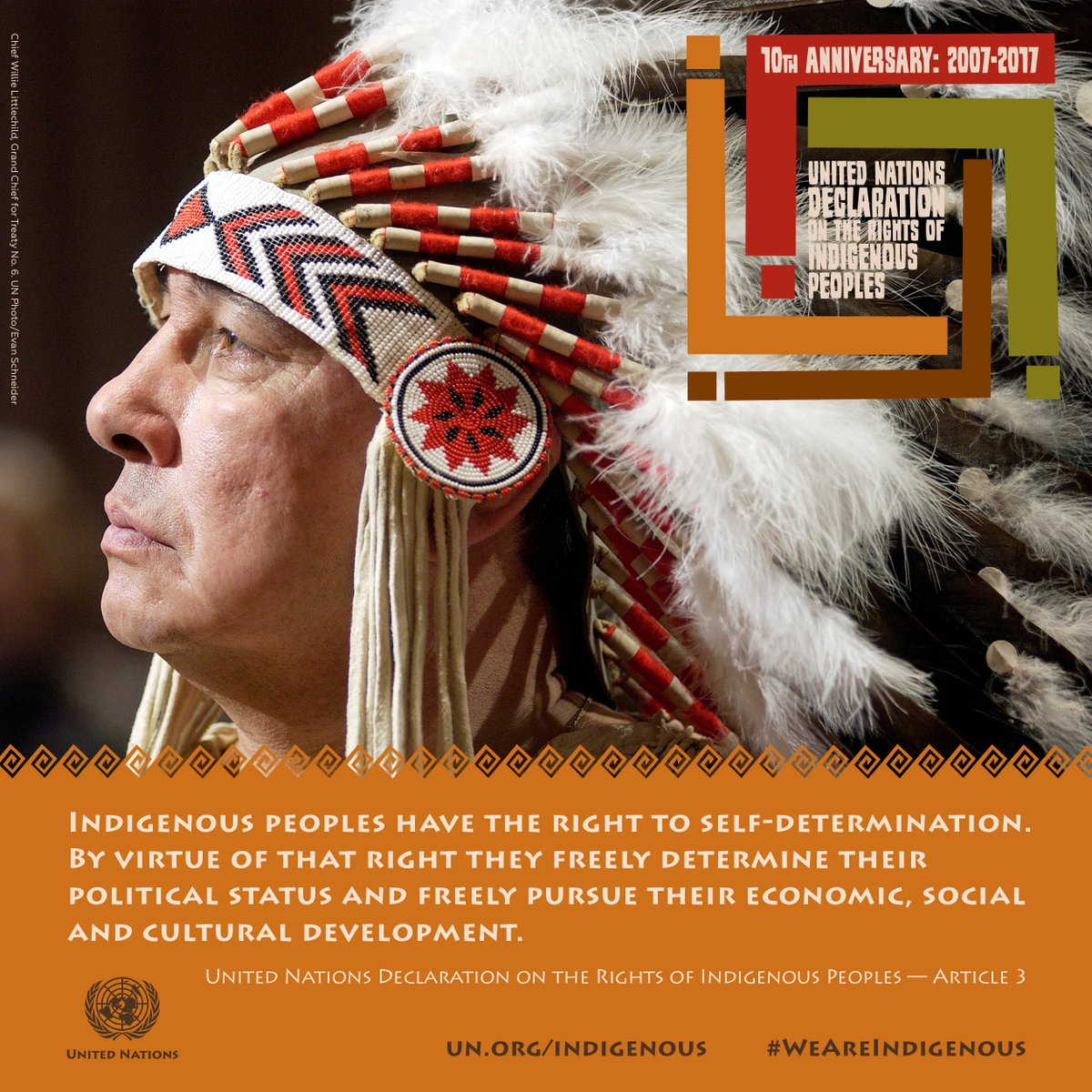 United Nations Declaration on the rights of indigenous peoples poster